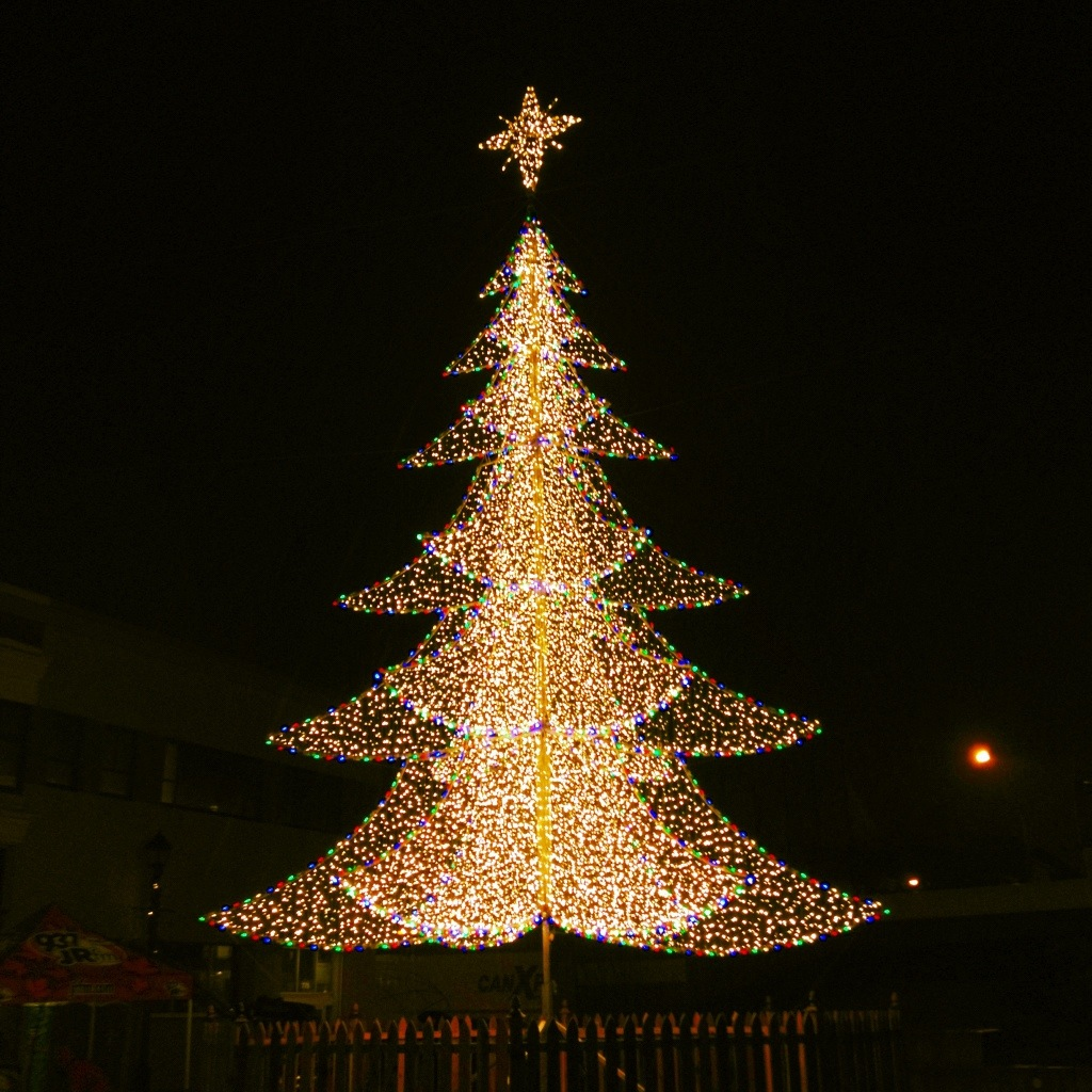 New Westminster Christmas Tree 2012 – Clausito's Footprints
