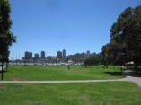 Rushcutters open field