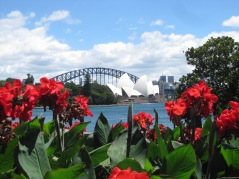 Opera House Red Flower