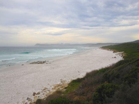 The White-Sand Friendly Beaches
