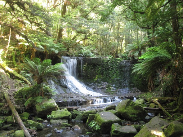 Beautiful Waterfall in Mt. Field National Park