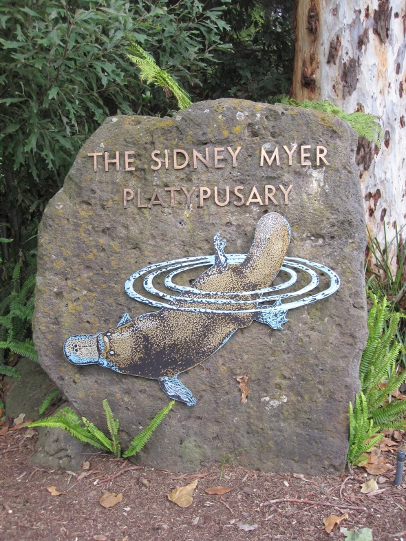 Melbourne's Platypusary