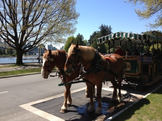 The Horse-Drawn Carriage Tour at the Park