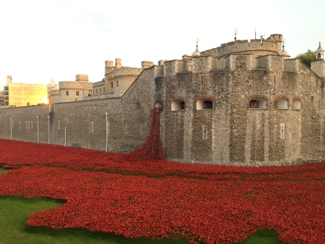 Blood Swept Lands and Seas of Red - Poppy Cascade