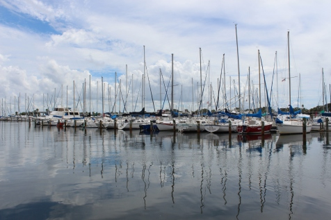 Marina in St. Pete