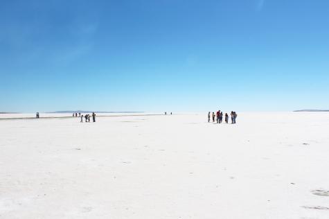 Salt Pan of Lake Tuz